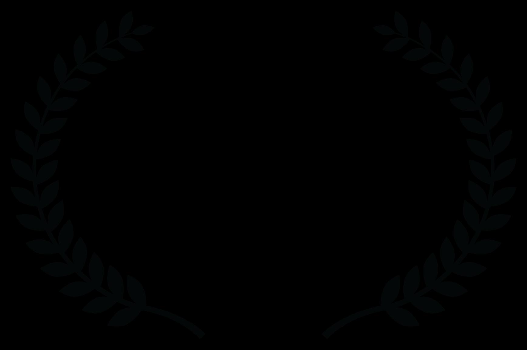 Best Short Film – TEKNOCHAT FILM FESTIVAL Spain – 2017 Viens vers moi clip-Director -Réalisateur -Viviane Riberaigua-Artist -Carine ED NED