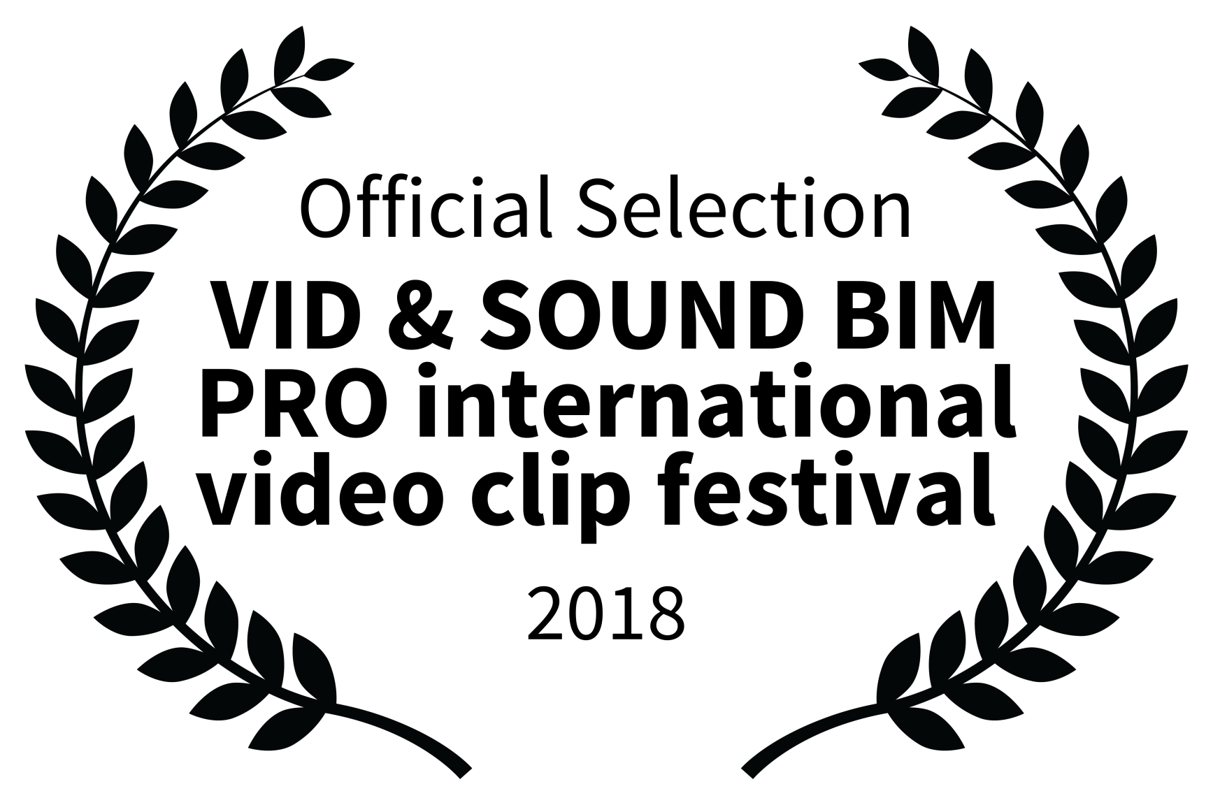Official Selection – VID SOUND BIM PRO international video clip festival Sunny Day Looking for Emma Ned – Riberaigua Director- 2018
