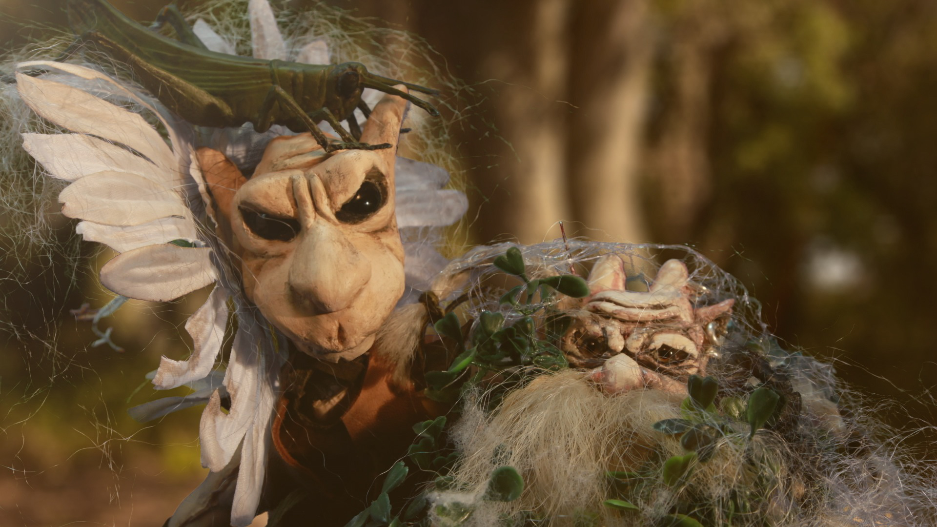 Dark forest – realisateur director animation stop motion – clip -Music video director – Viviane Riberaigua-3